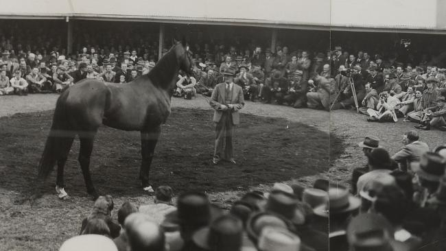The Newmarket sale ring at William Inglis was packed when Shannon was sold in 1947.