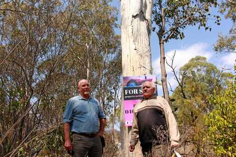 Maryvale resident David Bate and Githabul elder Sam Bonner inspected the tree last week.
