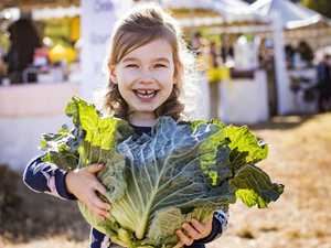 This weekend's Northern Rivers produce markets list