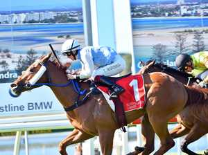 SC Turf Club Racing - Defence Missile