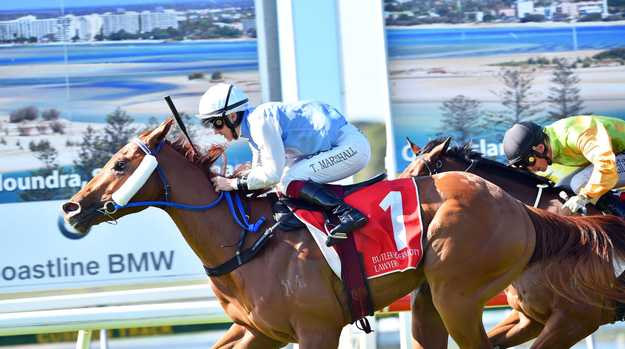 Sunshine Coast Turf Club, Race 4, MARCOOLA SLSC NIPPERS QTIS Three-Years-Old Handicap 1000m 3Y HCP. Winner number 1, Defence Missile.