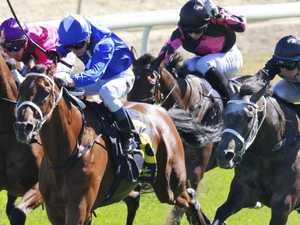Raceday focus: Bathurst and Queanbeyan