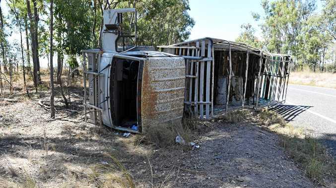 WATCH: Cattle lost in Brooweena truck roll over