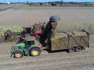 Cane harvesting - Qunaba Bundaberg