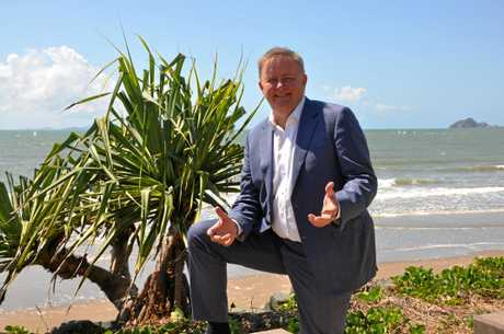 Shadow Minister Anthony Albanese soaking up some CQ sun in Yeppoon