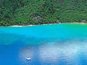 Mackay, Whitsunday region still reeling from shark attacks