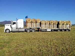 Hay rolled out to Mackay region farmers