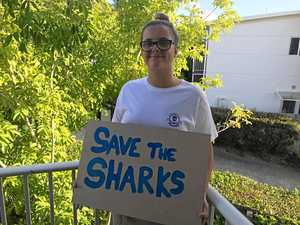 Whitsunday protest against shark cull