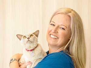 Workplace pet survives a dangerous encounter