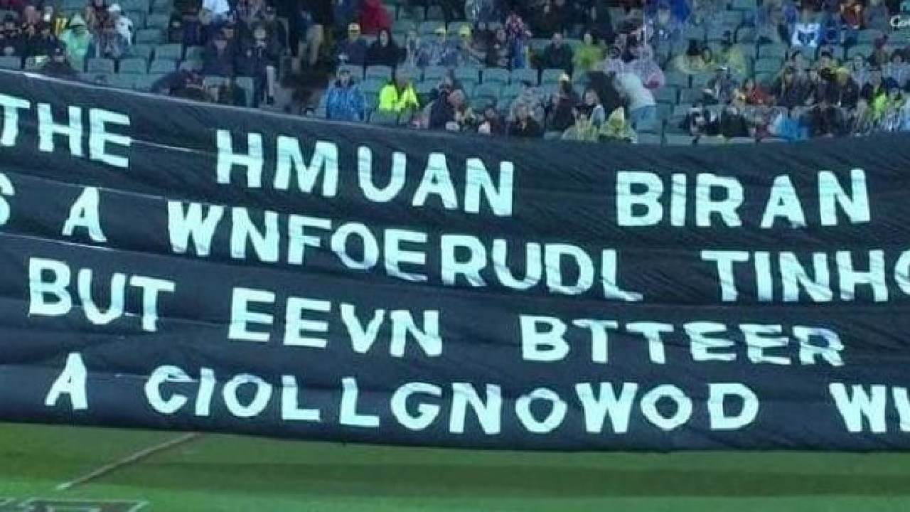 Written like a true Collingwood supporter.