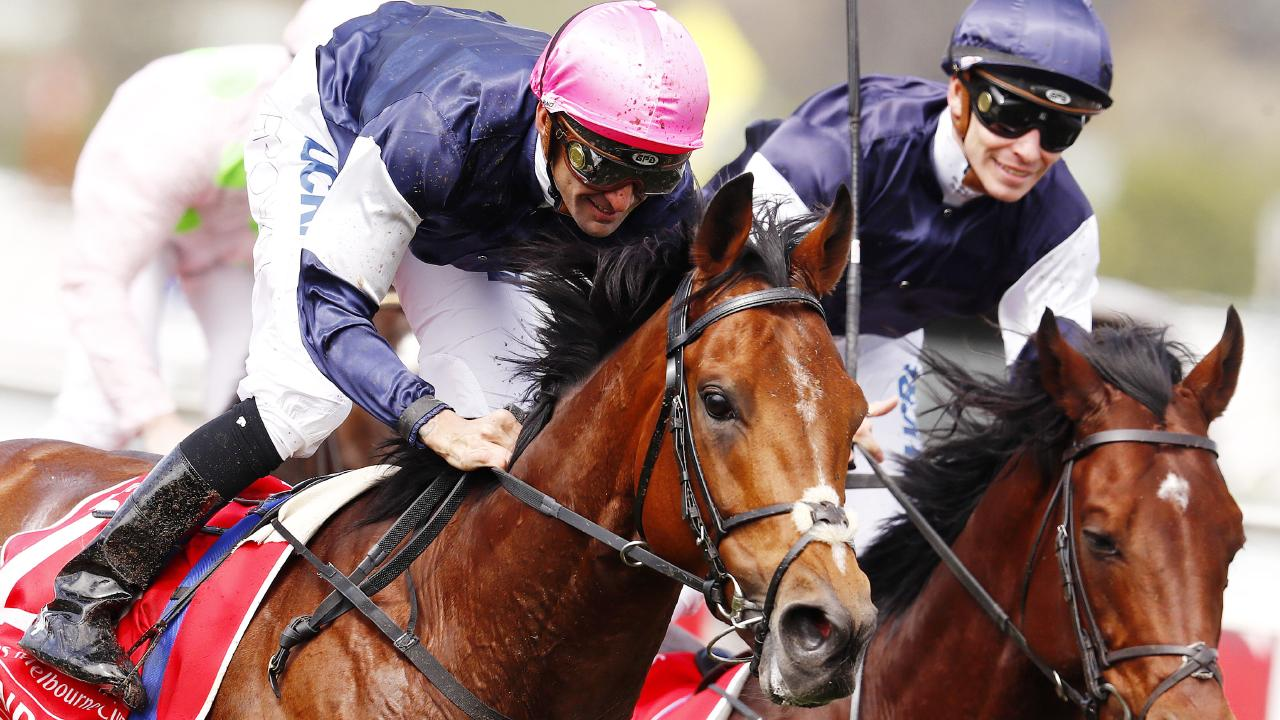 Rekindling (pink cap) takes out last year's Melbourne Cup. Picture: Michael Klein