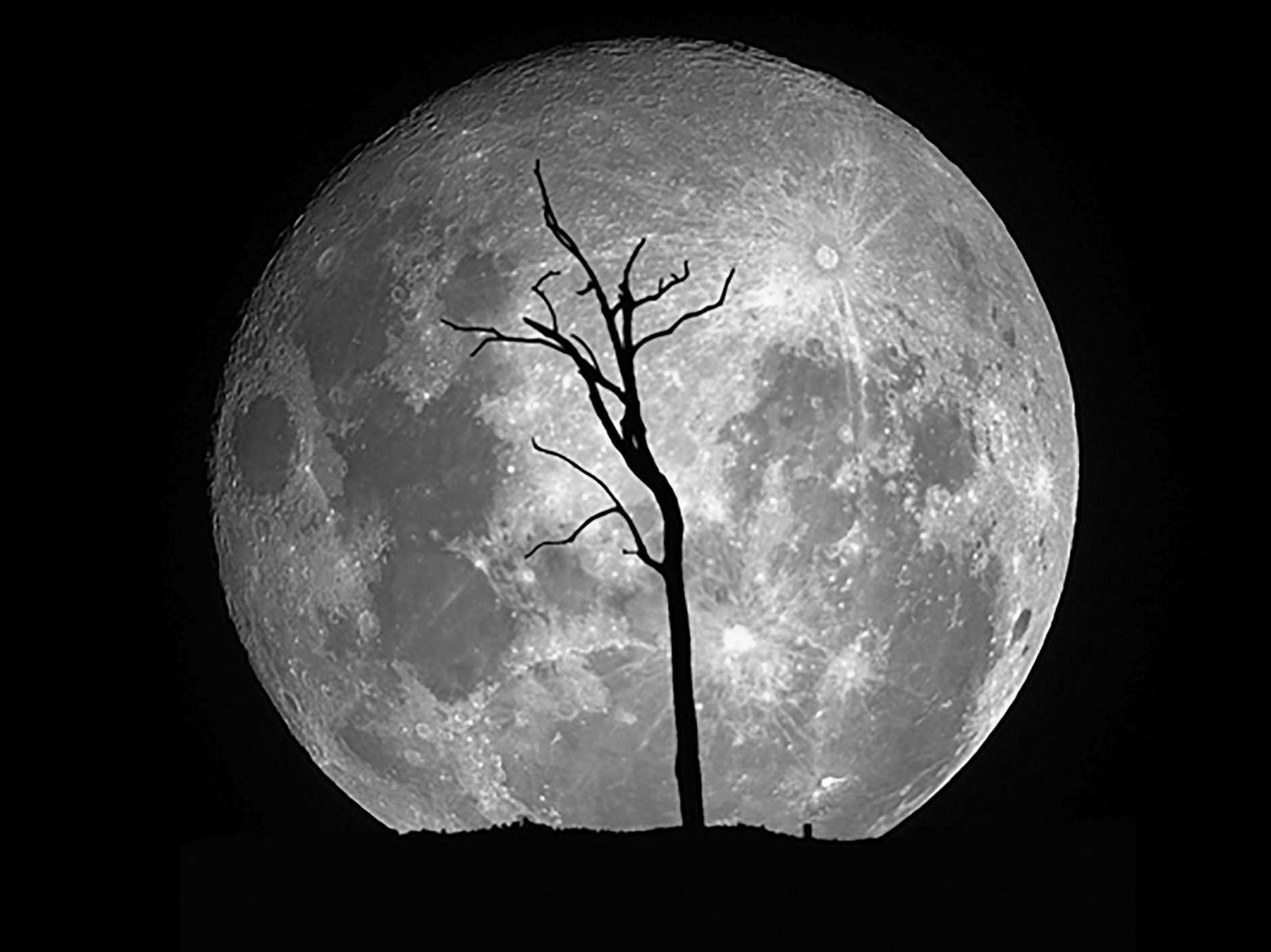 THE MOON: Our nearest neighbour in space has fascinated humans for centuries.