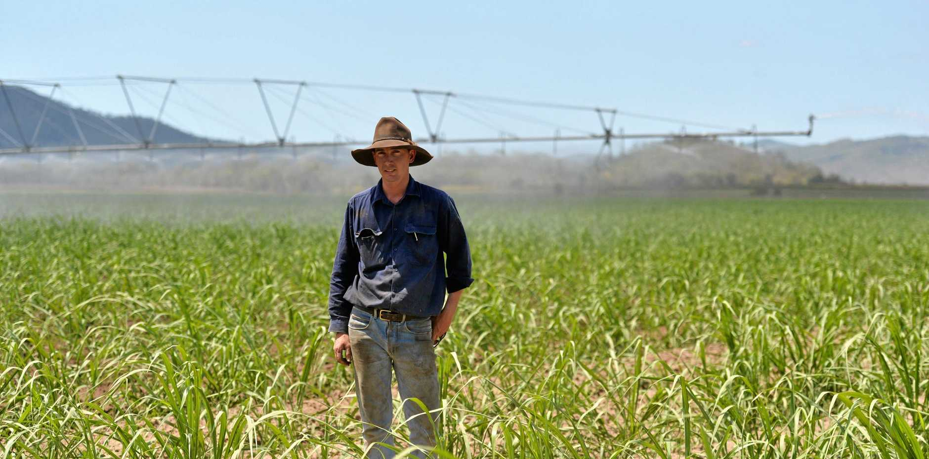 Mirani cane farmer Byron Nicholson is frustrated at how much farmers have to pay for electricity.