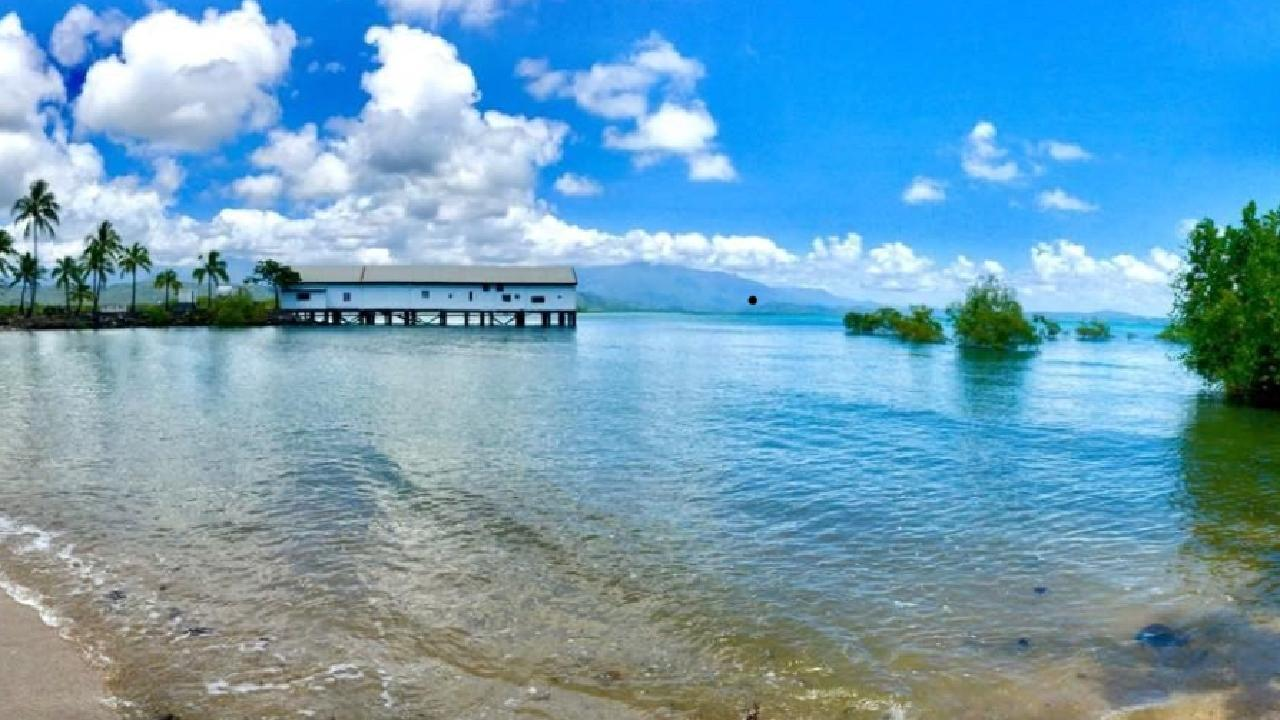 Port Douglas' wharf in Douglas Shire. Photo: Ross Walker.