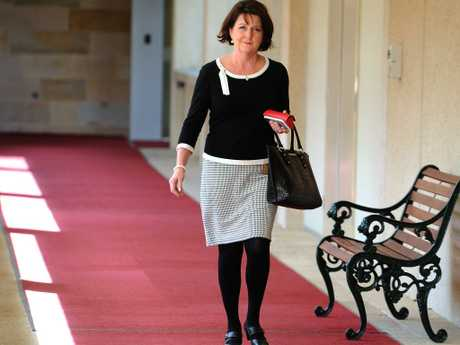 Jann Stuckey MP State Parliament question time in August. (AAP image, John Gass)