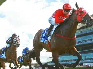 Redzel back on track for sprint prize record