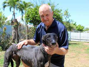 Long journey to keep greyhound racing passion alive