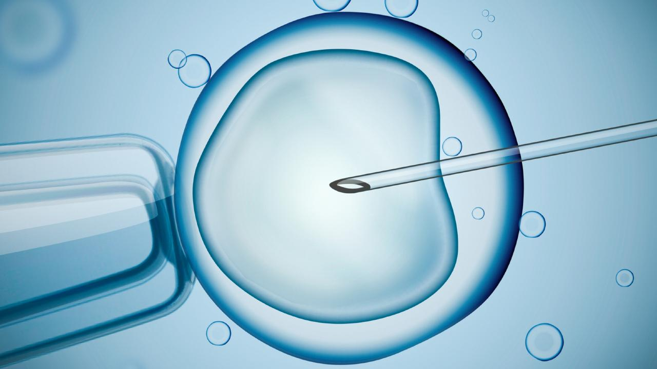 Women seeking sperm via unregulated methods, such as the internet, are running a huge risk of problems down the track.