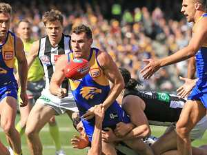 Shuey wins Norm Smith medal