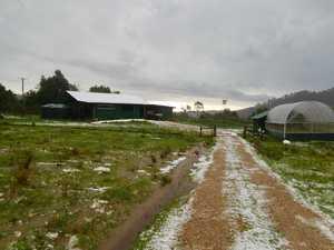 Hail storm wrecks farm
