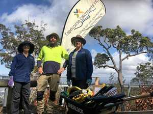 Mount Archer's vegetation gets a welcome helping hand