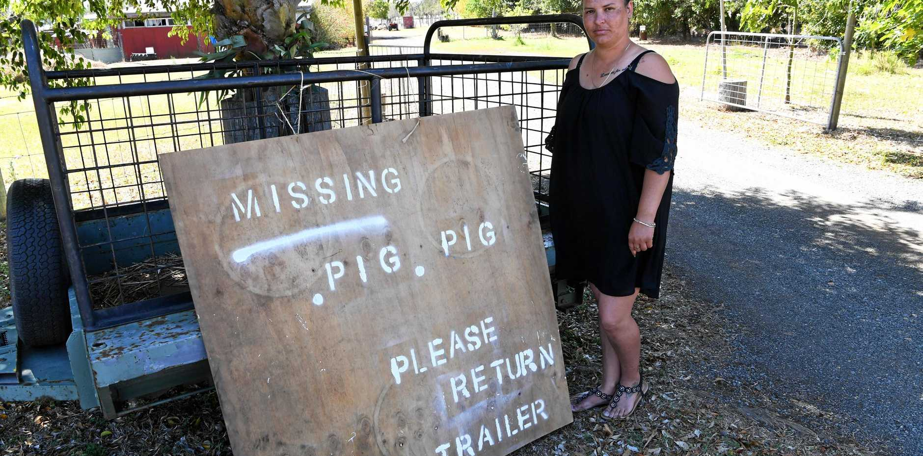 MISSING PIG: Tia Johnston wants her week-old piglet, which went missing on Thursday, returned to her Elliott Heads Rd home.