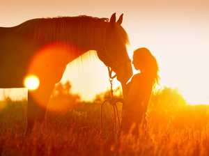 The horse that captured my soul and broke my heart