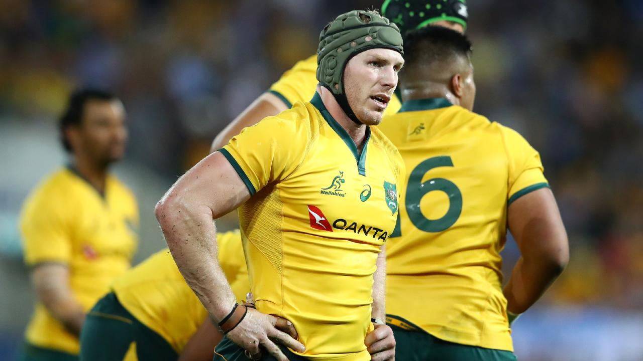 No Wallaby tries harder than the indefatigable David Pocock. Picture: Getty Images