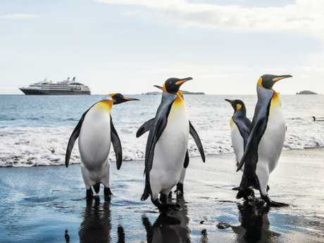 Fares for polar cruises tend to be all-inclusive. Picture: Ponant