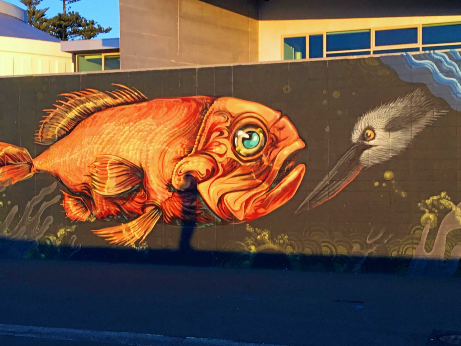 A highlight of the Murals for Oceans project is seen in the morning light.