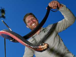 Afraid of snakes? Richie can fix that