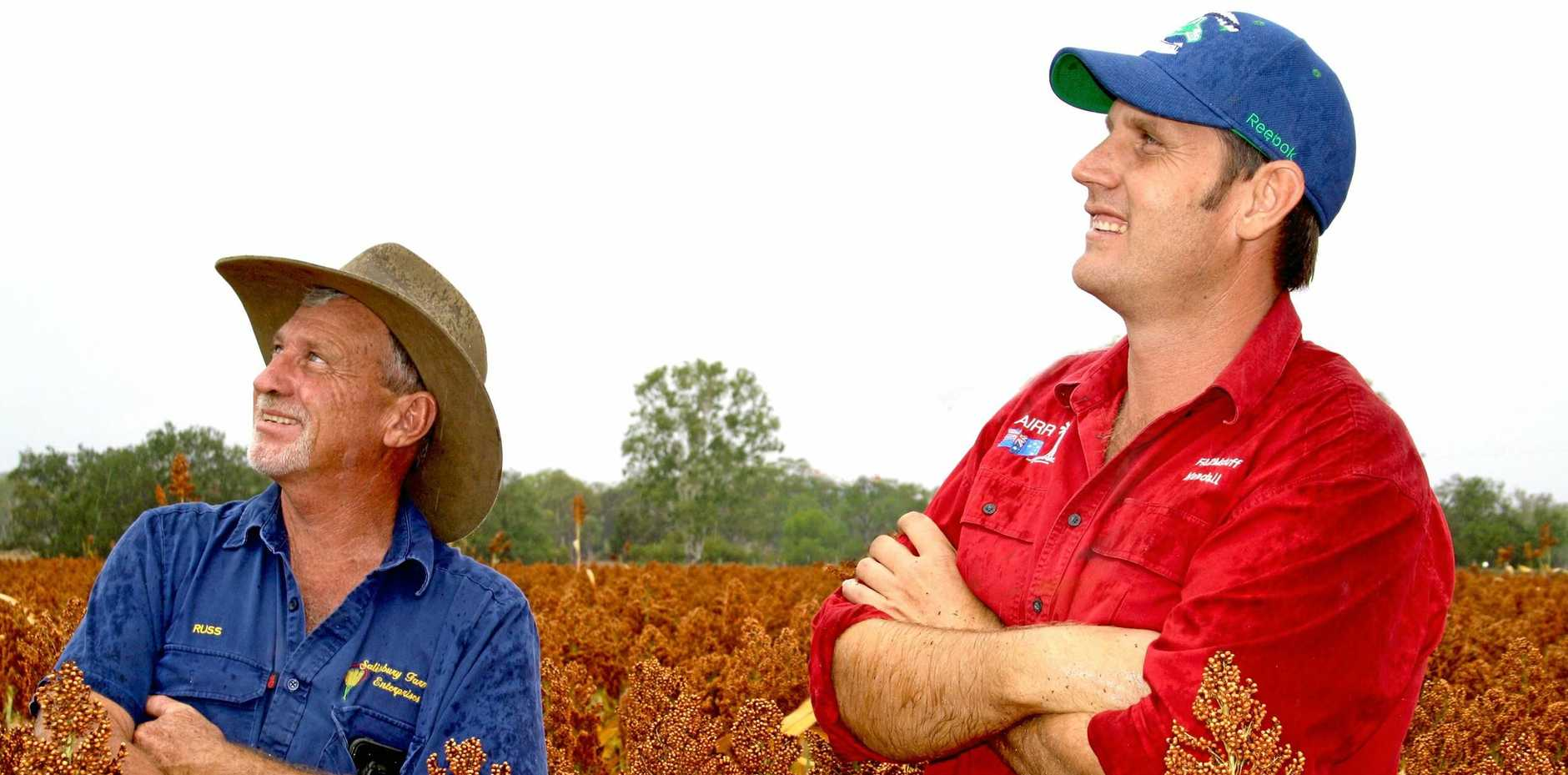 GOOD INVESTMENT: Monto farmer Russ Salisbury (left) and Farmstuff Monto agronomist Kendall Muller in a sorghum crop.
