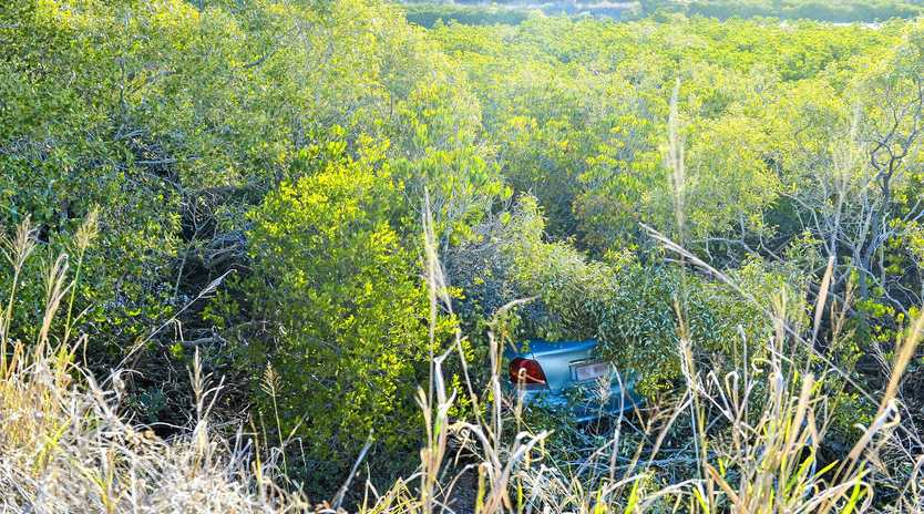 A car drove into mangroves this afternoon on the corner of Palm Drive and Mylne Street.