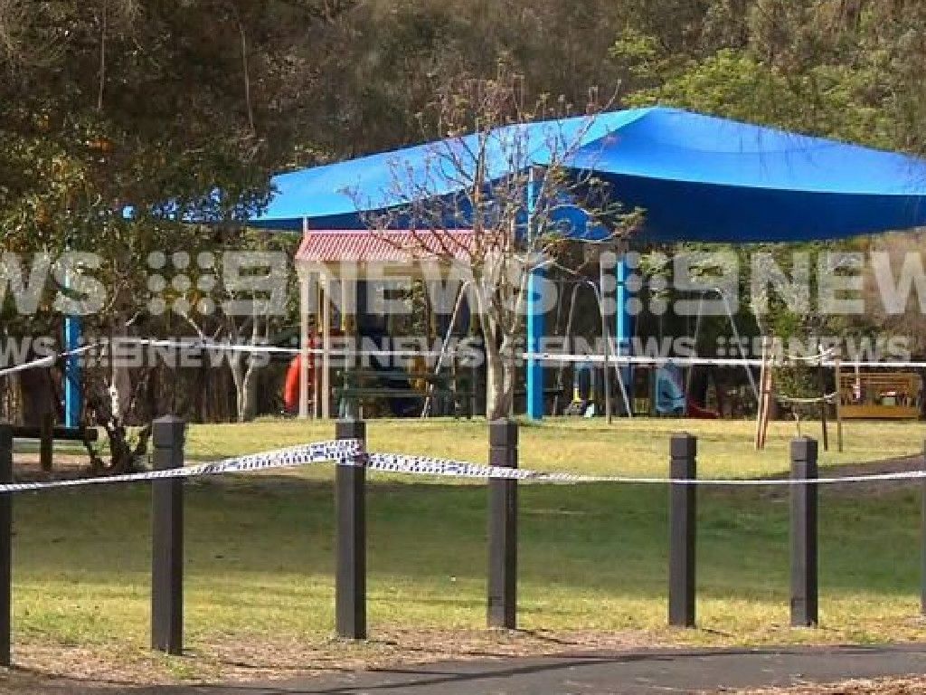 A council worker made the gruesome discovery early on Wednesday morning. Picture: Nine News.