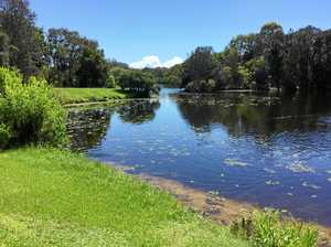 How Banora residents can help tackle canal weed infestation