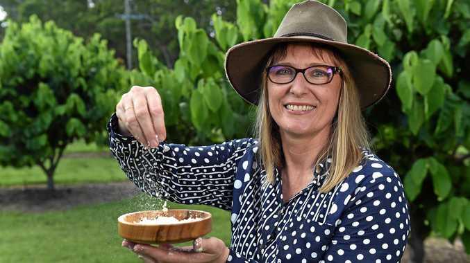Glasshouse Mountain's famer Karen Martin creates Custard Dust from her produce as an alternative sweetener.