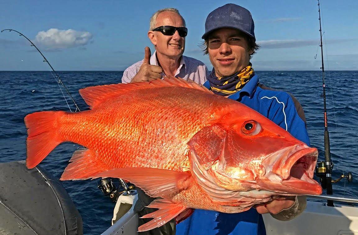 LANDED: Trekka 2 crews caught this cracking nannygai off North Reef.