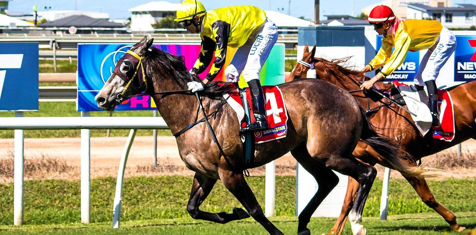 Mackay-based trainer Trinity Bannon's galloper Goliath, who almost died due to complications from being gelded, has a strong chance at a maiden win on Derby Day.