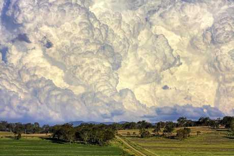 Chris McFerran's stunning image Van Gogh went viral.