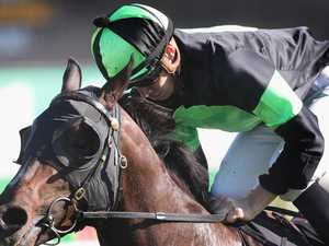 Queensland colt Sesar rules in the Roman Consul Stakes