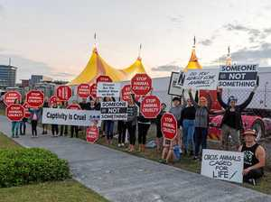 Animal rights protesters target circus