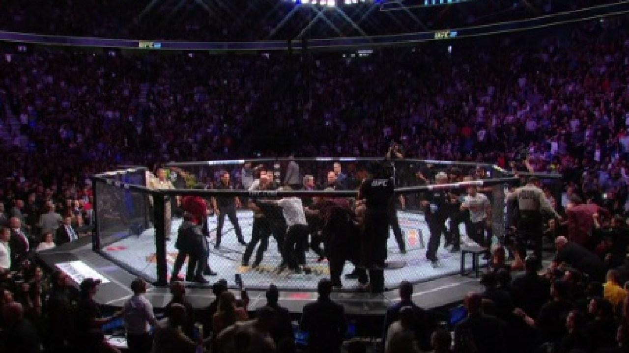 Wild scenes in a post-fight brawl at UFC 229.