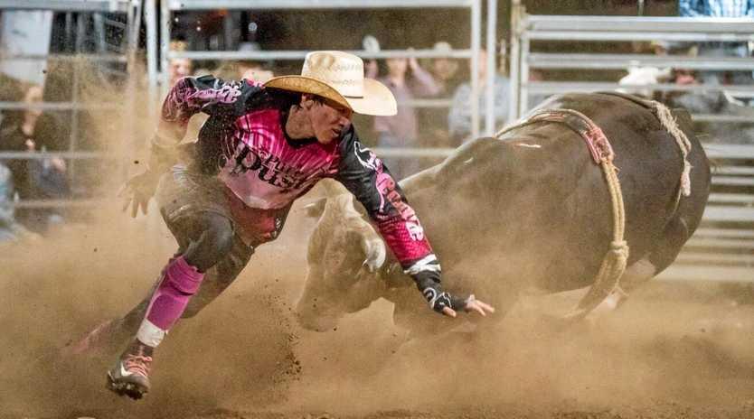 CLOSE CALL: Bullfighter Dylan Swan in action at the Mulga Bullride in September.