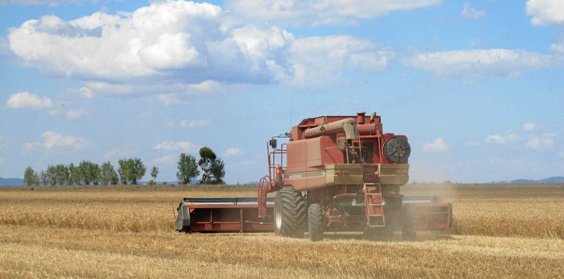 HARVEST: Rain will help Southern Downs farmers get out of hard financial times, but surviving drought in the future will require a new approach to financing.