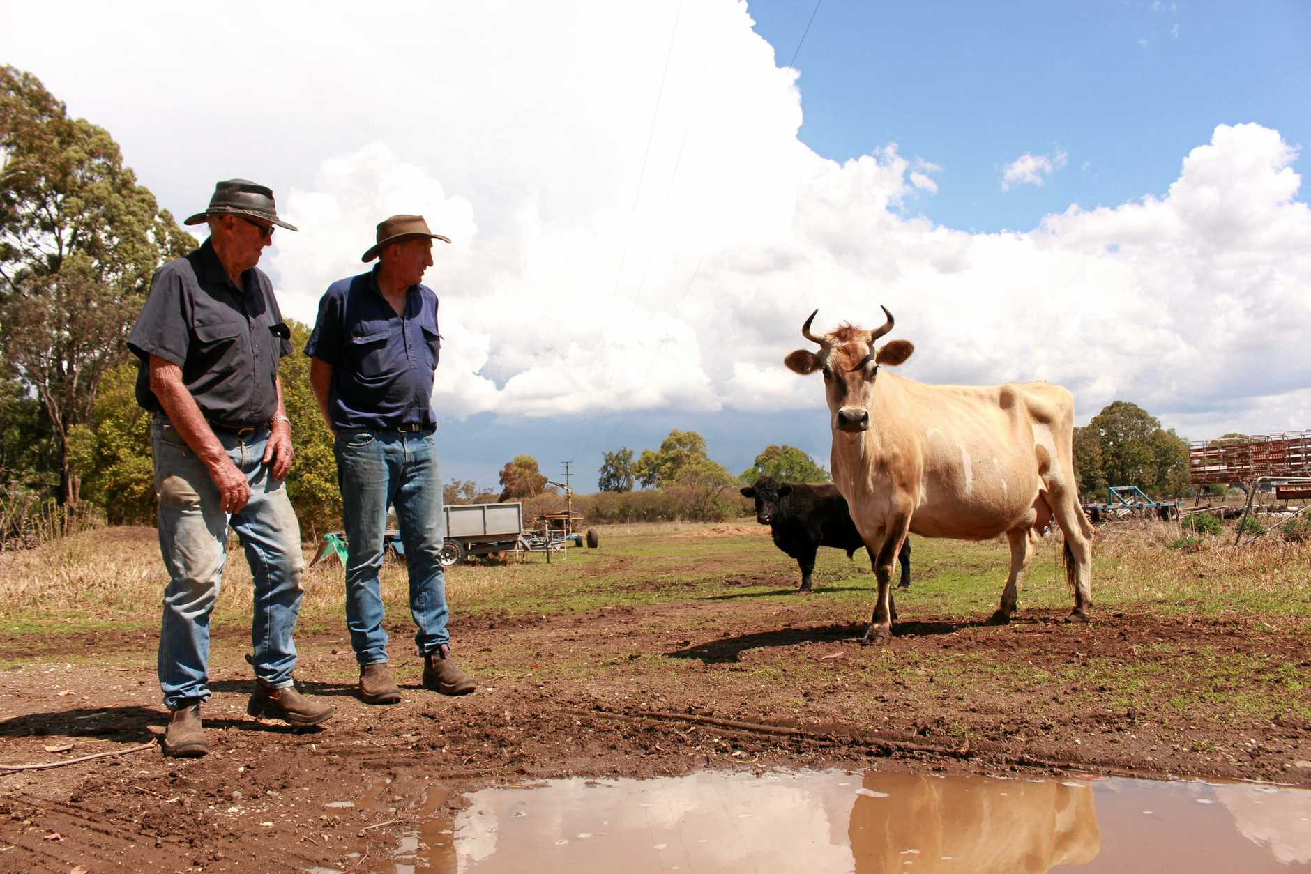 Lyle and Peter Grayson have been farming in Tannymorel for decades.
