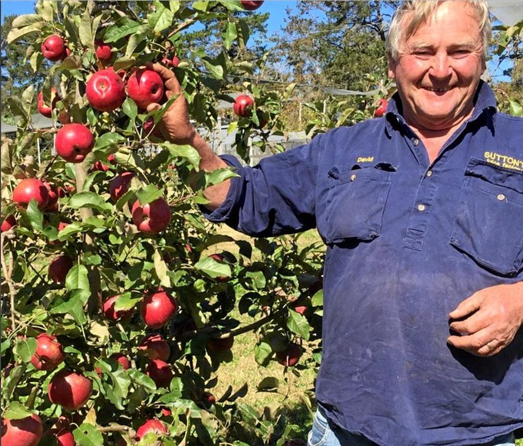 David Sutton welcomed the new cider labels.