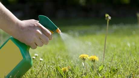 There's increasing debate in Australia about whether a chemical in Roundup is safe to use. Picture: iStock