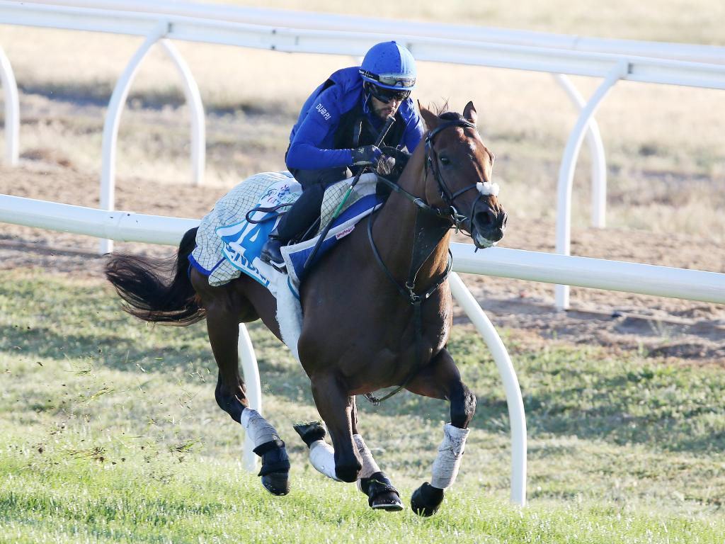 Godolphin's Benbatl is set to race in Saturday's Caulfield Stakes. Picture: Michael Klein