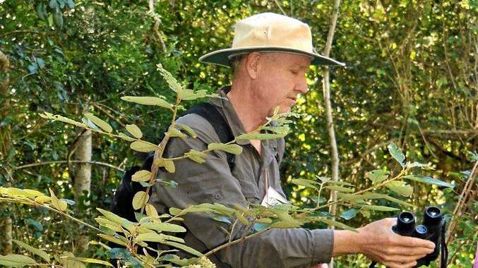 RIGHT: Tony van Kampen is delighted to find a red ash tree, belonging to the genus Alphitonia, which is the name given to his website.