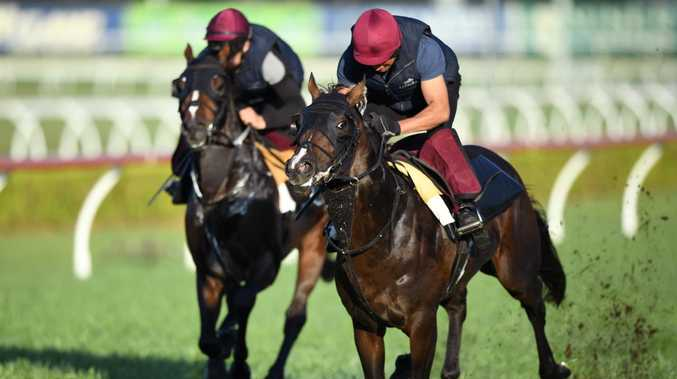 All betting for the Everest horse race has been suspended. Picture: AAP Image/Joel Carrett